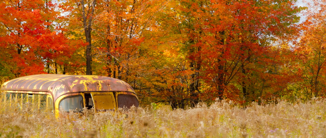 Photograph Retired School Bus by Fred Clark on 500px
