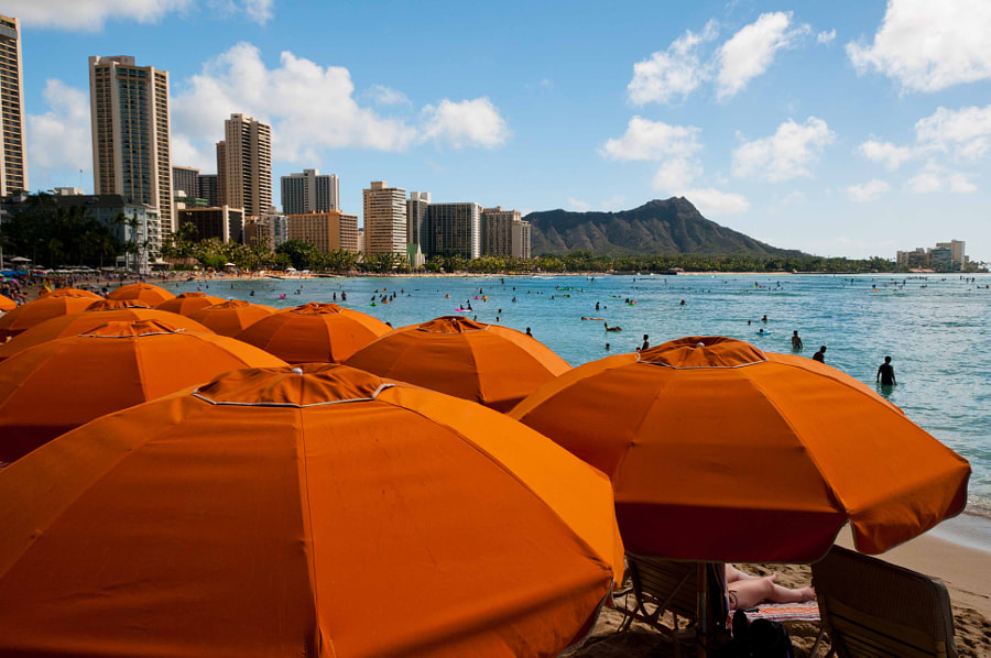 Photograph Waikiki Beach by Mike Bolger on 500px