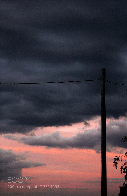 Photograph Prima del temporale by Simonetta DiMeo on 500px
