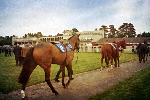 Photograph Parade Ring by Simon Harris on 500px
