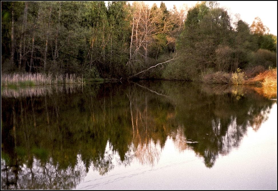 Photograph A Pond in South Bohemia by Michal Horák on 500px