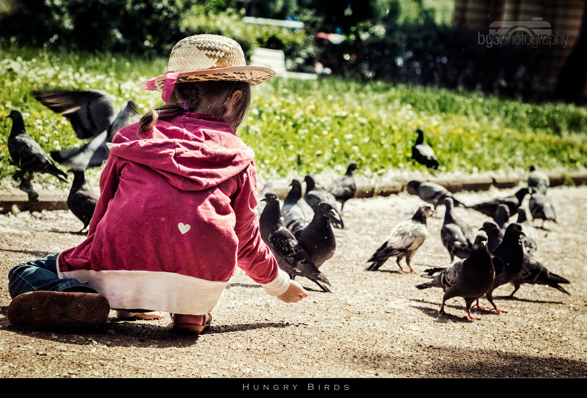 Photograph Hungry Birds by Benjamin gs on 500px