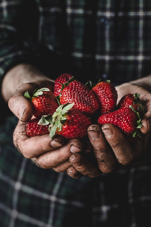 Handful of strawberries by Vladislav Nosick on 500px.com