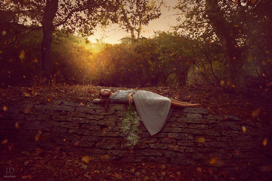 Falling Leaves by Jessica Drossin on 500px.com