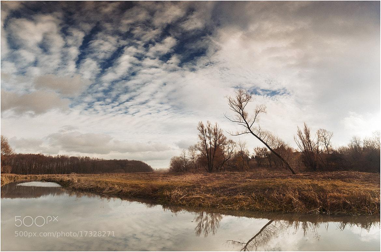 Photograph Autumn mood by Павел Рыженков on 500px