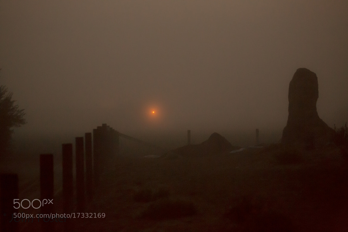 Photograph Mission Soledad Ruins in fog by John Foster on 500px
