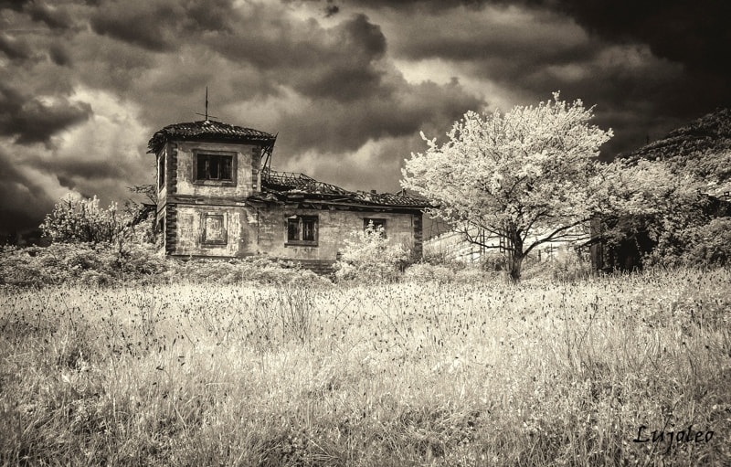Photograph Decadence by Luis Cabal on 500px