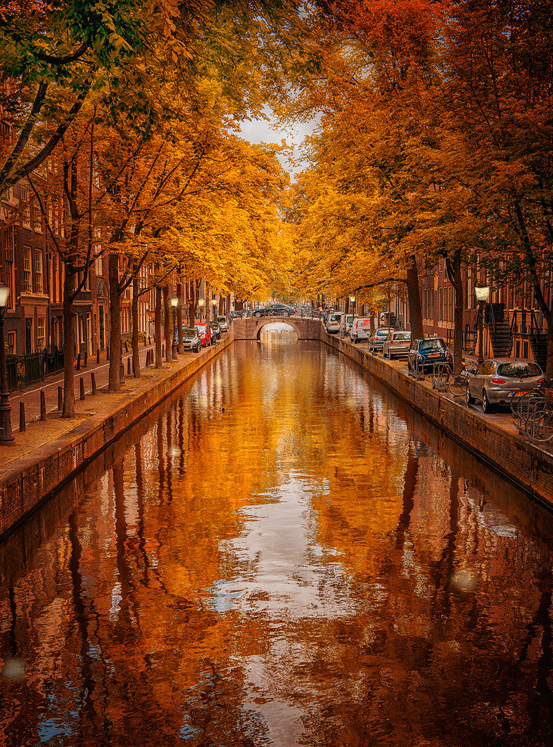 Photograph Amsterdam in Fall by Armin Barth on 500px