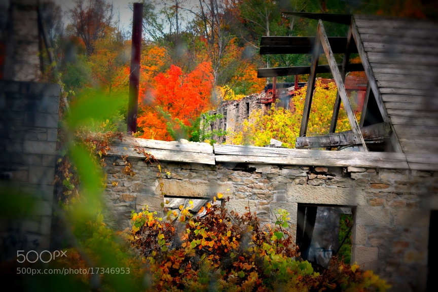 Photograph Abandoned Mill in the Fall 1 by Dan Harmer on 500px