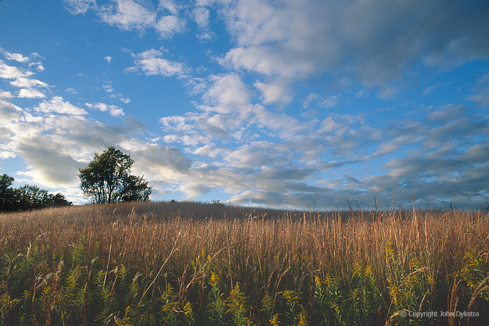 Photograph Edge of the Prarie by John Dykstra on 500px