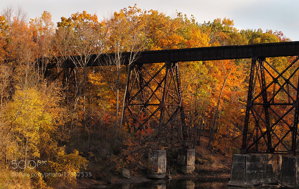 Photograph Fall in Ohio by Dustin Hardwick on 500px