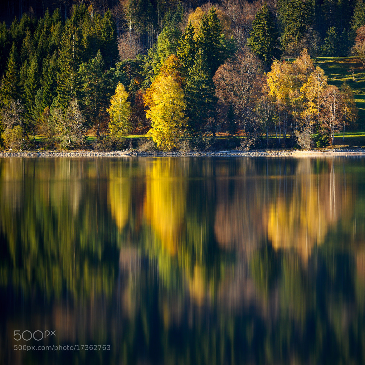 Photograph Autumn reflections by Gianluca Lastoria on 500px