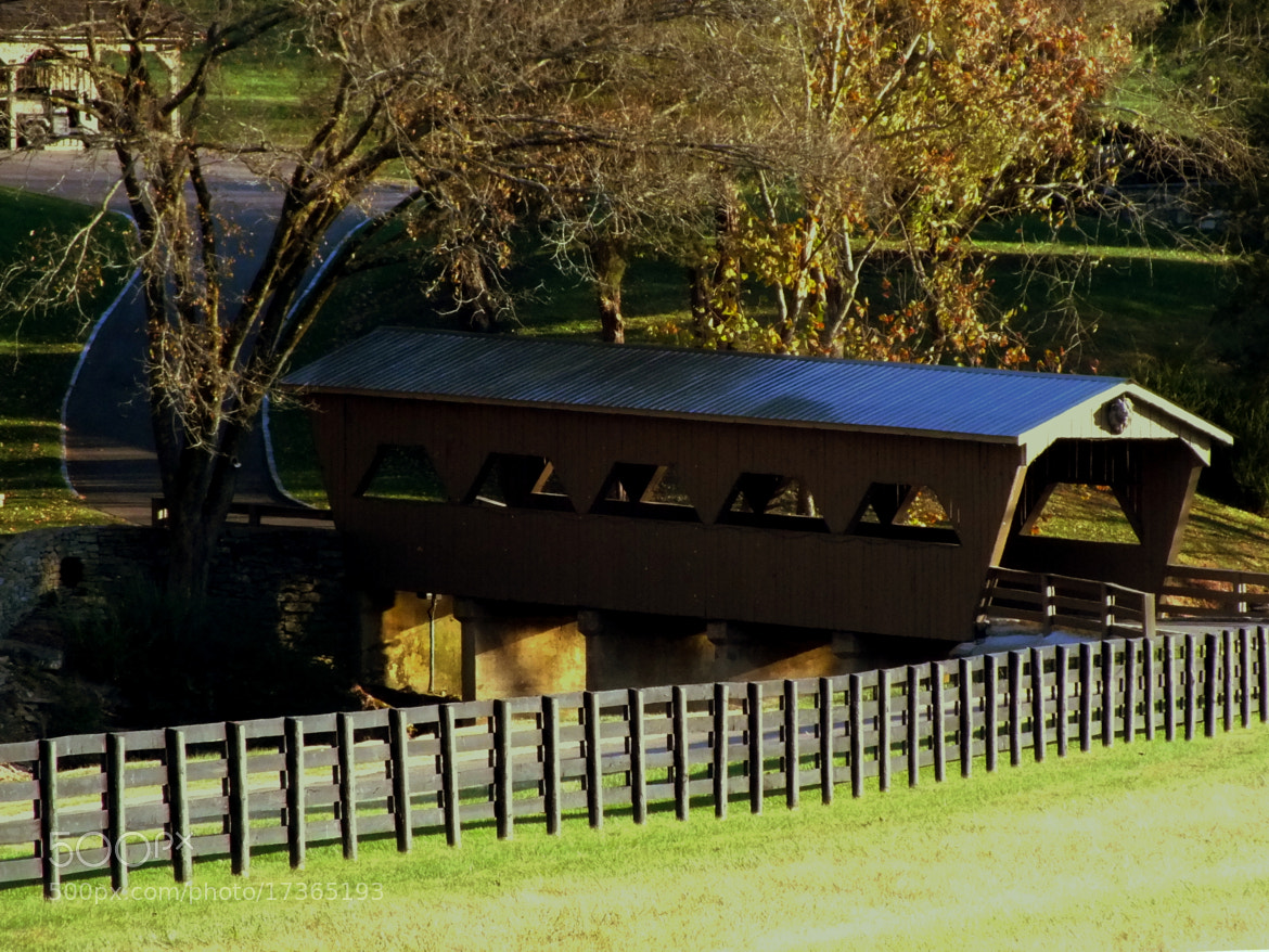 Photograph Country bridge by Michelle Richardson on 500px