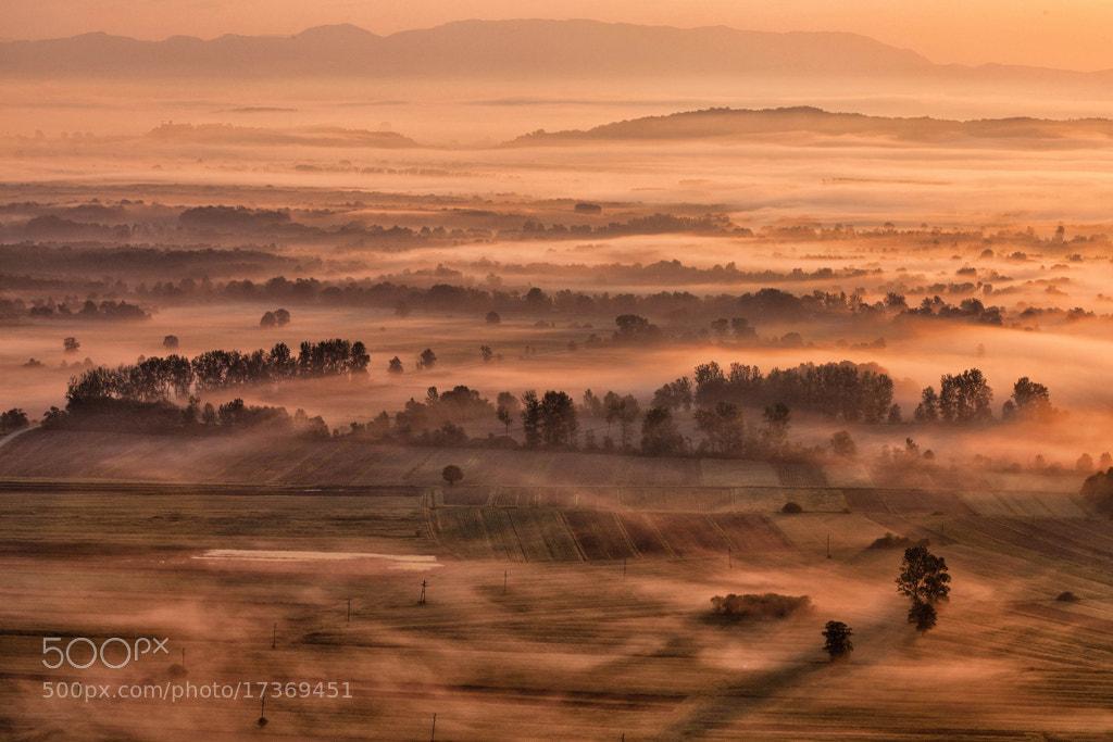 Photograph Awakening by Rok Godec on 500px