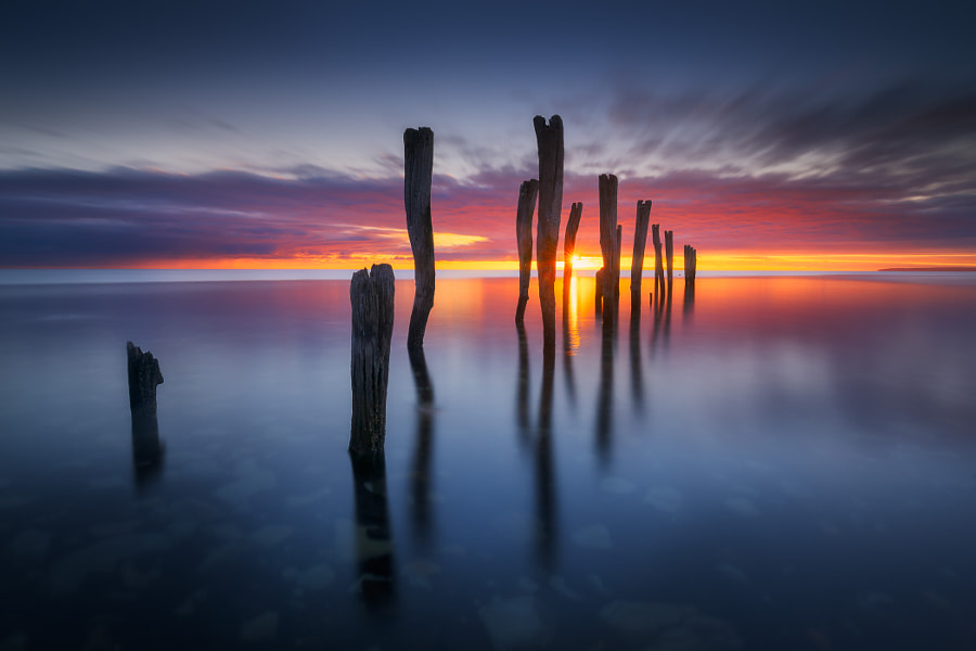 Sunward by Dylan Toh  & Marianne Lim on 500px.com