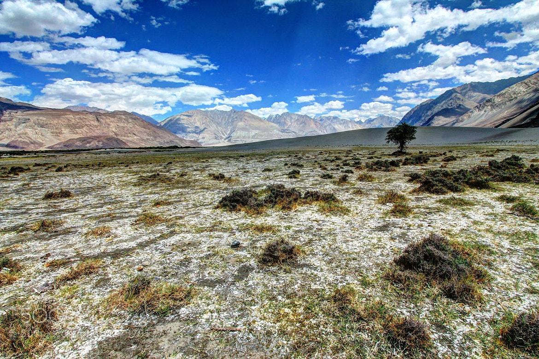 Photograph Hunder Sand Dunes by Dhritiman Lahiri on 500px