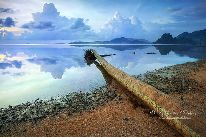 Photograph Moody World by Yudhisa Putra on 500px