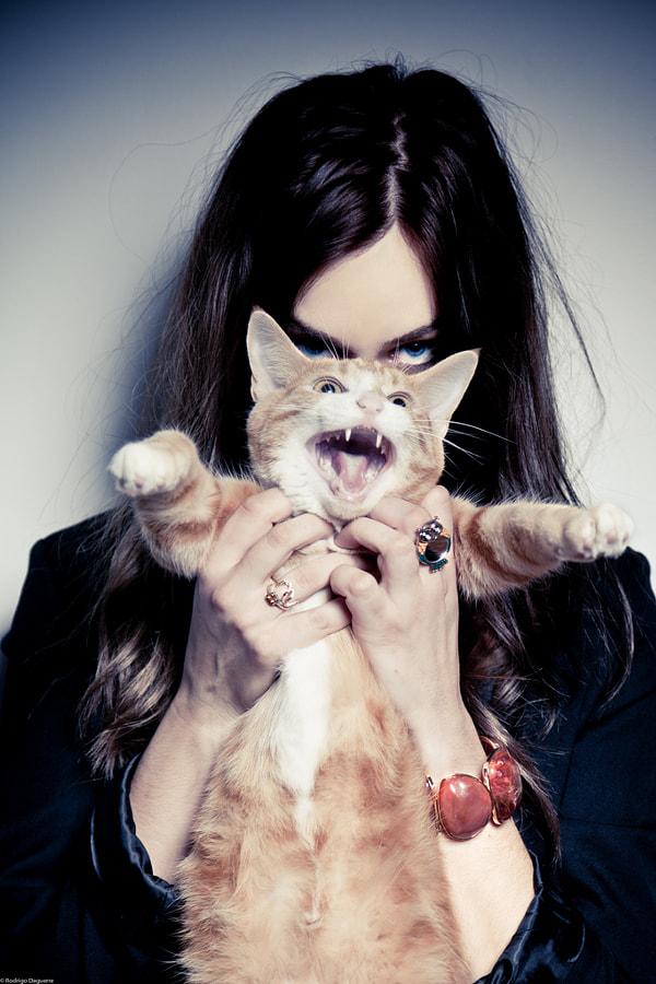 Kitty by Rodrigo Daguerre on 500px.com