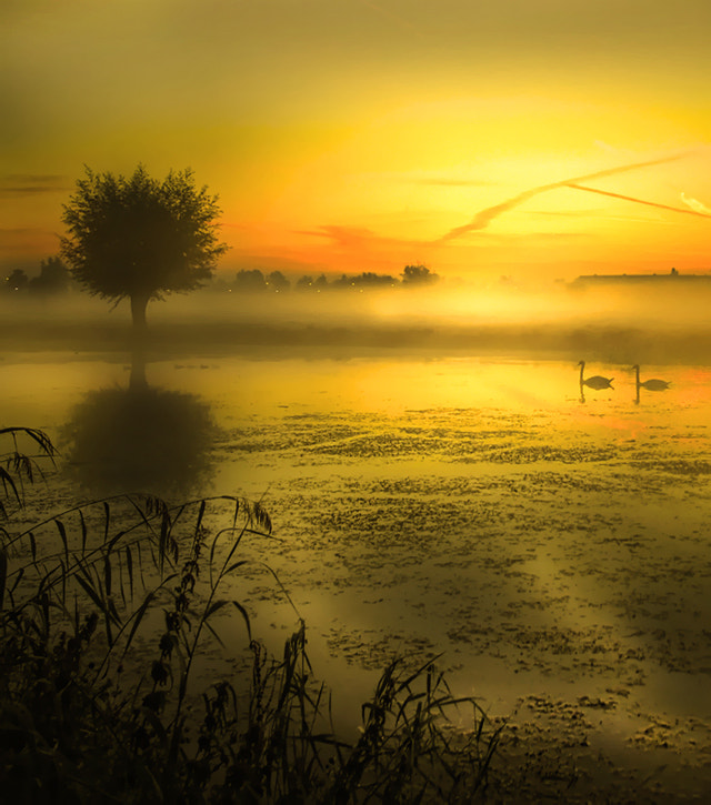Photograph together by Patrick Strik on 500px