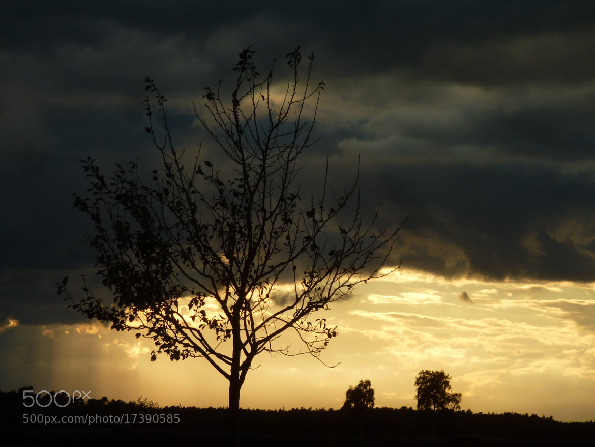 Photograph Sonnenuntergang 002 / sunset 002 by Hans-E. Wyrwich on 500px