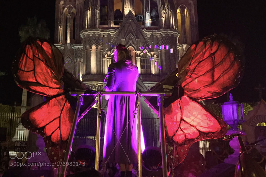 Sonic Butterfly Performance - San Miguel de Allende, Mexico