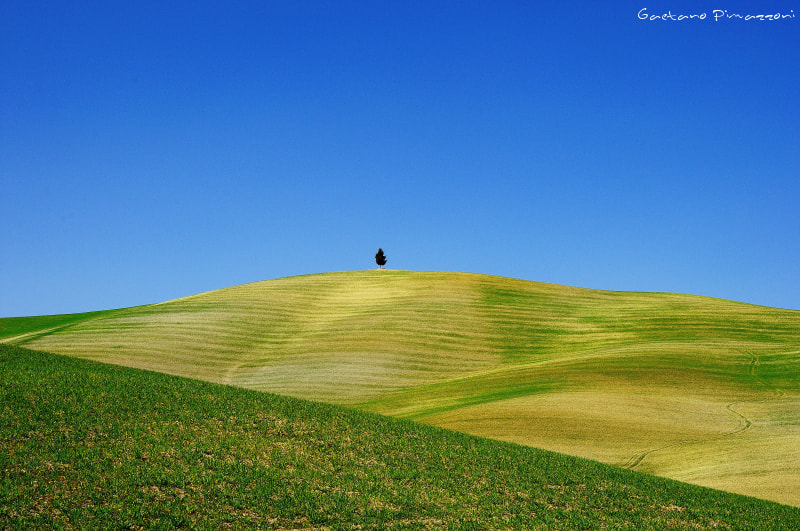 Photograph Lonely on the peak by Gaetano Pimazzoni on 500px