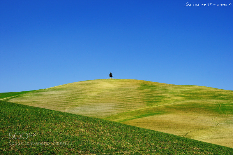 Photograph Lonely on the peak by Gaetano Pimazzoni on 500px