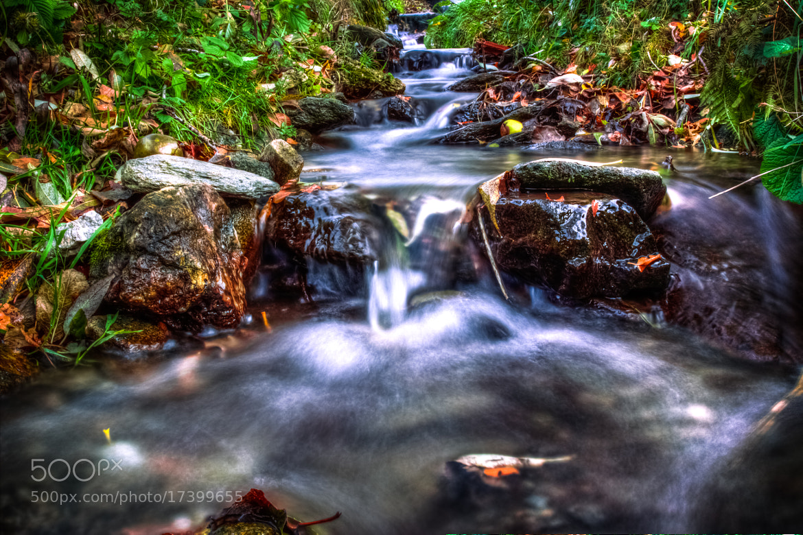 Photograph A small river by Kreativ Foto Cheesy on 500px