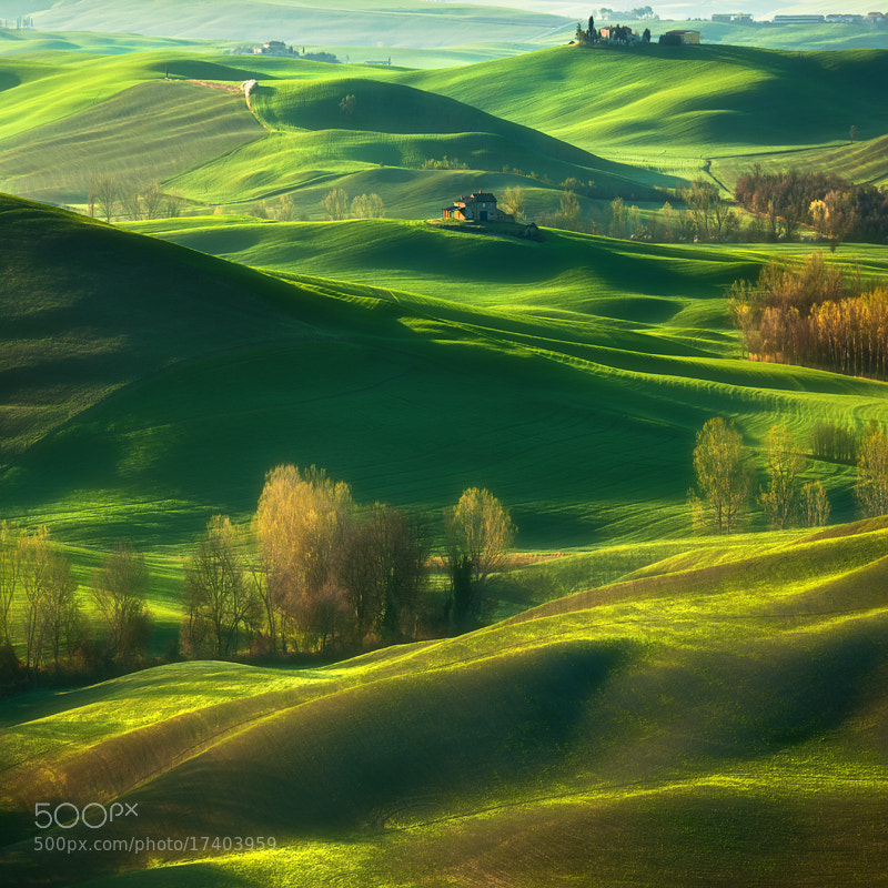 Photograph Fields... by Krzysztof Browko on 500px
