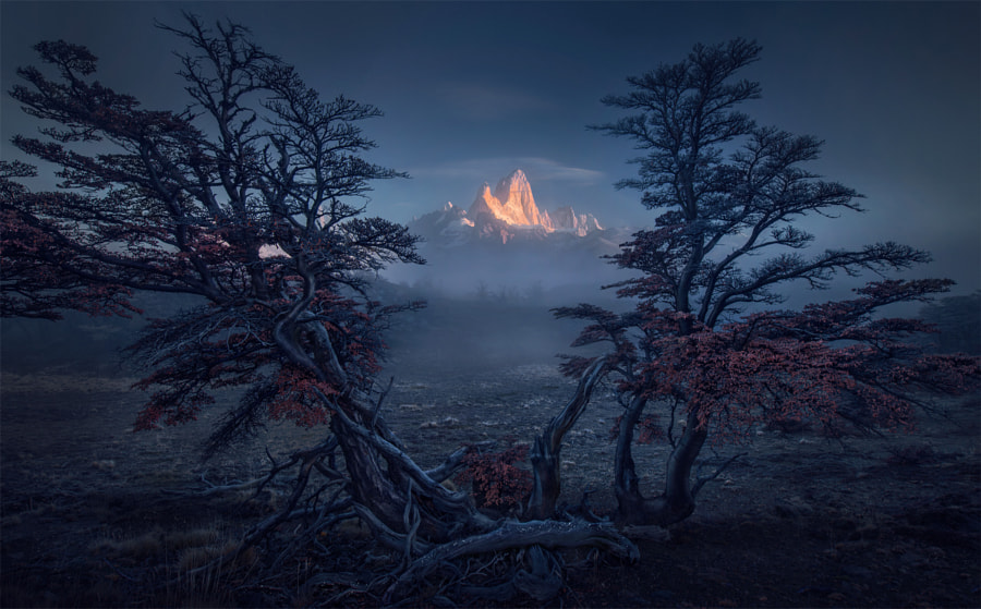 Hopefall by Max Rive on 500px.com