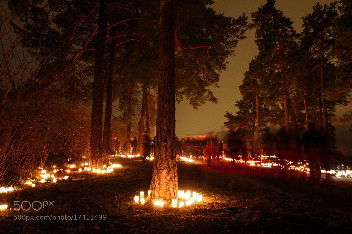 Photograph All Saints' Day by Dan Pascu on 500px