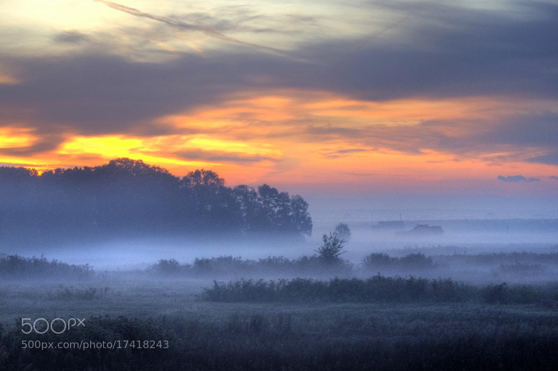 Photograph The mist... by Claudia Gadea on 500px