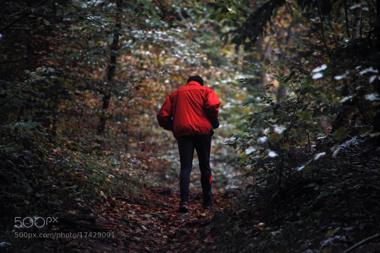Photograph Joggeur dans les bois by Basile  Weber on 500px