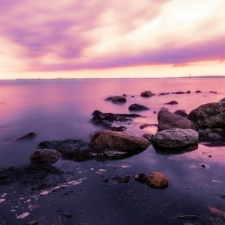 Violette Baltic