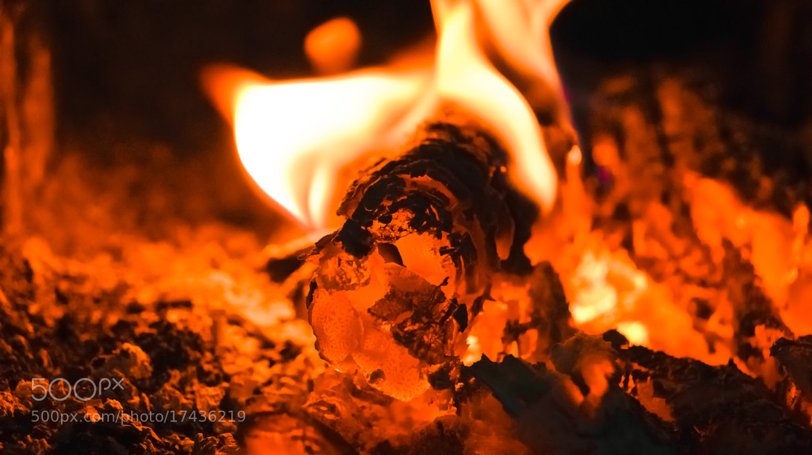 Photograph flame by Caqlar Sсгэάм. on 500px
