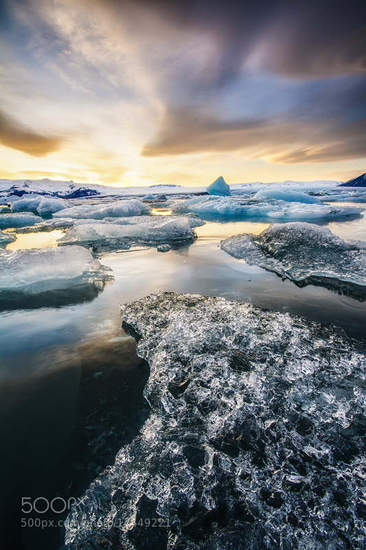 Photograph Cheats of Ice by DD DC on 500px