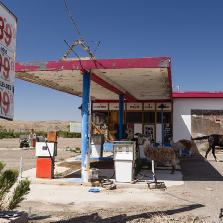 Abandonded gas station, Canon EOS 60D, Sigma 18-50mm f/2.8-4.5 DC OS HSM