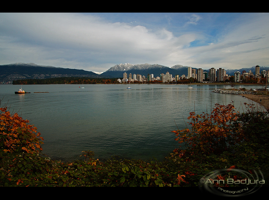 Photograph Fall in Vancouver by Ann Badjura on 500px