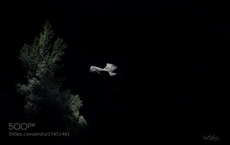 Photograph Black Air by Raúl Iglesias on 500px