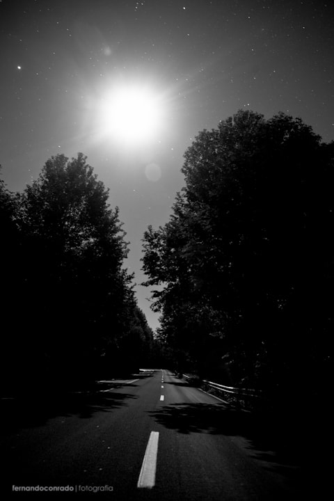 Photograph My life is the road. by Fernando Conrado on 500px