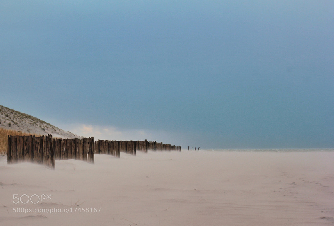 Photograph The Beach by Joost Lagerweij on 500px