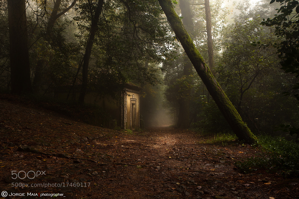 Photograph Hansel and Gretel by Jorge Maia on 500px