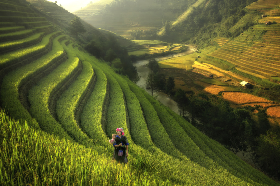 Mother and child walk the rice terraces. by Jakkree Thampitakkul on 500px.com