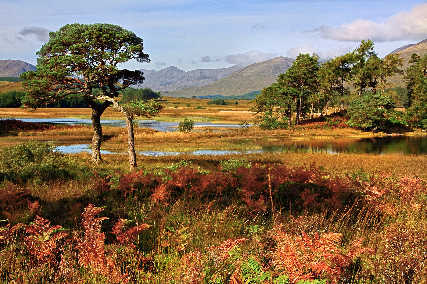 Photograph Loch Tulla  by Alan Coles on 500px