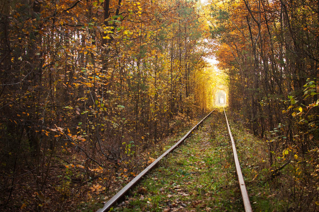 Photograph Love tunnel by Roman Chupryna on 500px