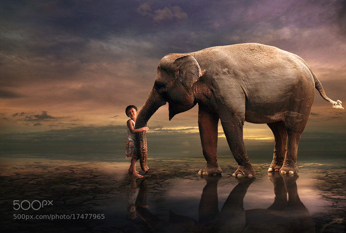 Photograph Best Friends Forever by 3 Joko on 500px