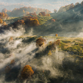 Clouds and autumn colors by Hans Kruse (hanskrusephotography)) on 500px.com