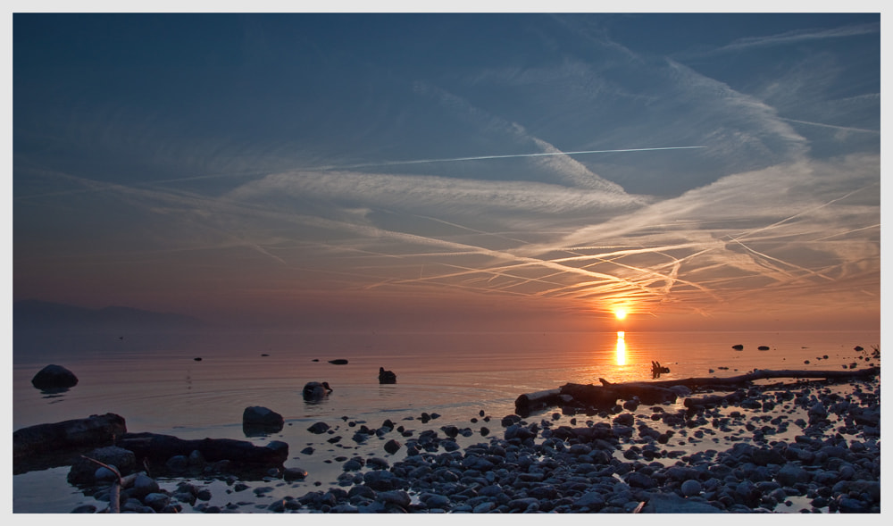 Photograph Bodensee sunset by Tobias Milz on 500px