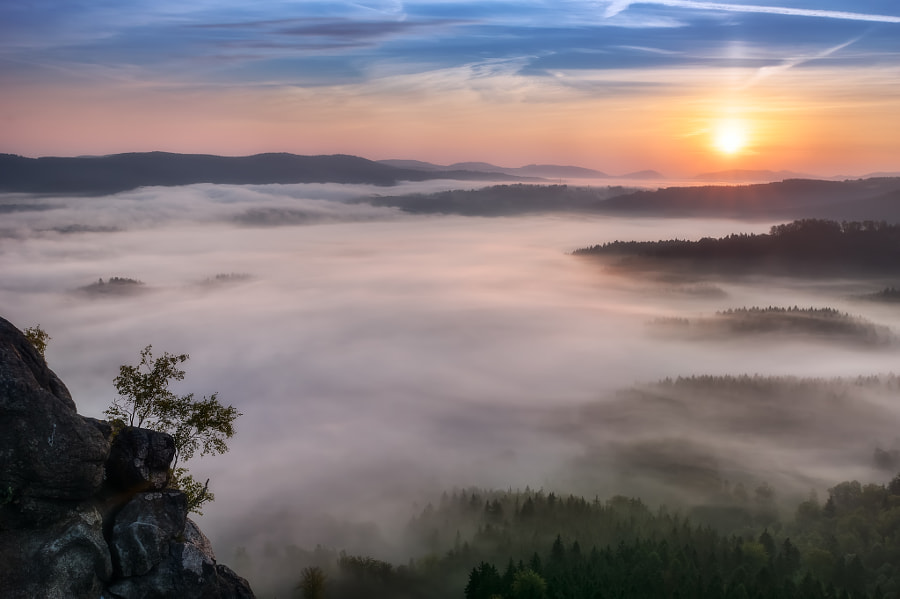 Sunrise over mist