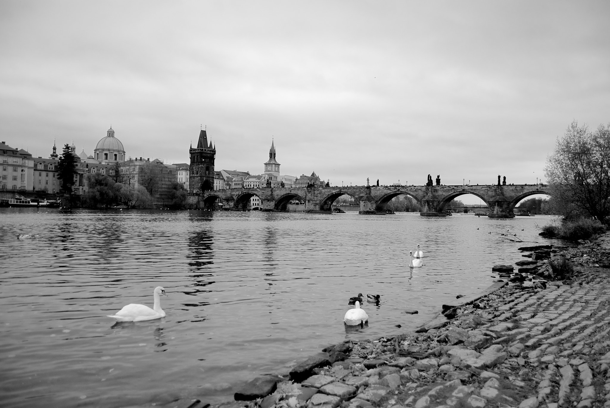 Photograph Prague by Francesca Montuolo on 500px